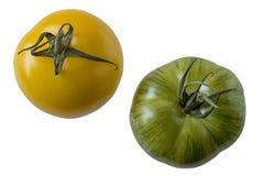 Gele en groene geïsoleerde tomatenverscheidenheden, stock foto