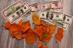 Gele en oranje bladeren met Amerikaanse dollars Royalty-vrije Stock Afbeeldingen