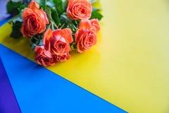 Gele en oranje nostalgische Eden Rose Oranje rozen op kleurrijke regenboogachtergrond De ruimte van het exemplaar Groetenprentbri royalty-vrije stock foto