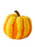 Gele en oranje pompoen Stock Foto's