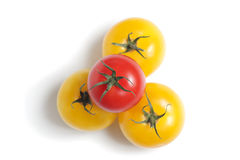 Gele en rode tomaten Stock Foto