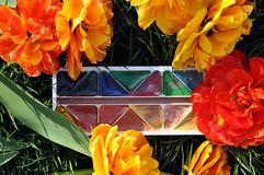 Gele en rode tulp en waterverf Royalty-vrije Stock Fotografie