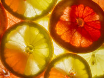 Gele en roze rijpe grapefruitplakken Royalty-vrije Stock Foto