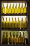 Gele flessen op een rij van wijnmakerijvenster Royalty-vrije Stock Afbeelding