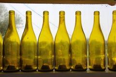 Gele flessen op een rij van wijnmakerijvenster Stock Afbeeldingen