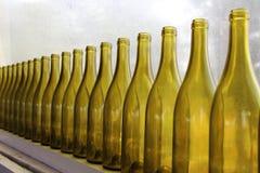Gele flessen op een rij van wijnmakerijvenster Royalty-vrije Stock Foto's