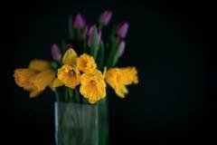 Gele gele narcisbloemen met purpere tulp die in vaas met groene muur bloeien stock foto