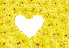 Gele gerbermadeliefjes en hart gestalte gegeven exemplaarruimte Royalty-vrije Stock Foto