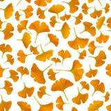 Gele gingkobladeren op witte achtergrond Stock Fotografie