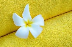 Gele handdoek en witte bloem Royalty-vrije Stock Afbeelding