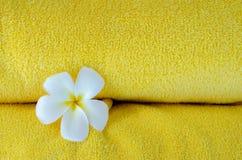 Gele handdoek en witte bloem Royalty-vrije Stock Foto