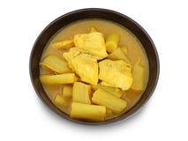 Gele hete zure soep met vissen en groente Royalty-vrije Stock Fotografie
