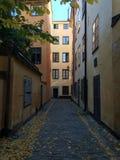 Gele huizen in Stockholm stock foto's