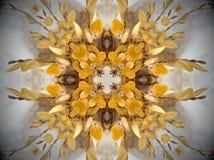 Gele installatie in sneeuw Mandala Stock Fotografie