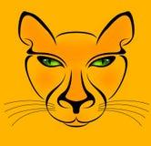 Gele kat Royalty-vrije Stock Afbeeldingen