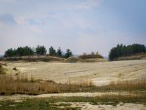 Gele landschapszand en bomen Stock Afbeelding
