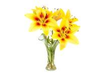 Gele lelie in een vaas Stock Foto