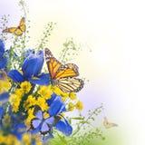 Gele lissen met gele madeliefjes Royalty-vrije Stock Foto's