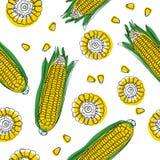 Gele maïskolven met groen bladeren naadloos patroon Rijpe graangroenten Vector illustratie stock illustratie