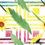 Gele madeliefje bloemen botanische bloemen Waterverf achtergrondillustratiereeks Naadloos patroon als achtergrond stock illustratie