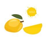 Gele mango op witte achtergrond Stock Fotografie