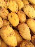 Gele Mango's in Thailand Royalty-vrije Stock Foto's