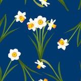 Gele narcis - Narcissen op Indigo Blauwe Achtergrond Vector illustratie Stock Fotografie