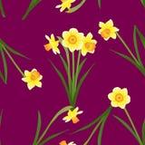 Gele narcis - Narcissen op Rode Violet Background Vector illustratie Stock Foto's