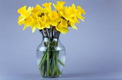 Gele narcissen in een vaas royalty-vrije stock fotografie