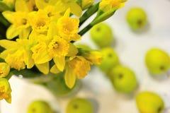 Gele narcissen en appelen Royalty-vrije Stock Foto's