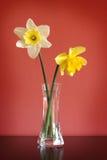 Gele narcissen in glasvaas royalty-vrije stock foto's