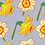 gele narcissen helder patroon royalty-vrije stock foto