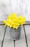 Gele narcissen in zilveren emmer Stock Fotografie