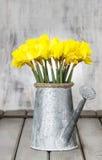 Gele narcissen in zilveren gieter Royalty-vrije Stock Foto's