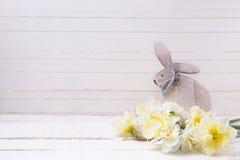 Gele narcissenbloemen en decoratief Pasen-konijn op wit royalty-vrije stock foto's