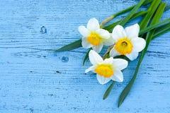 Gele narcissenbloemen op blauwe houten achtergrond van hierboven stock foto's