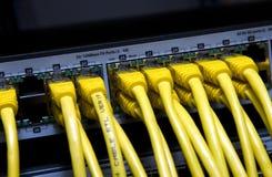Gele netwerkkabels Stock Afbeeldingen