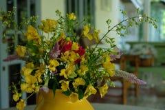 Gele ochtend Stock Foto