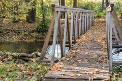 Gele, oranje en rode de herfstbladeren in mooi dalingspark Iecava letland royalty-vrije stock afbeelding