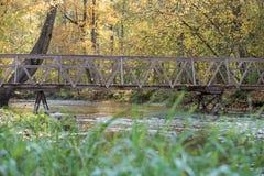Gele, oranje en rode de herfstbladeren in mooi dalingspark Iecava letland royalty-vrije stock fotografie