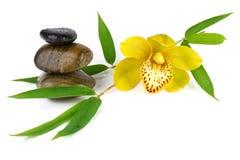 Gele orchidee met zenstenen die op wit worden geïsoleerdd Stock Afbeelding