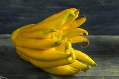 Gele Organische Buddhas-Handcitrusvrucht Royalty-vrije Stock Foto