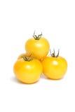 Gele organische tomaten Royalty-vrije Stock Afbeeldingen