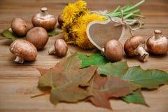 Gele Paardebloemen, Forest Mushrooms, Groene Bladeren op de Houten Lijst Wenskaart Garden& x27; s Achtergrond Royalty-vrije Stock Foto's