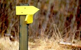 Gele pijlen die op de richting in openlucht wijzen royalty-vrije stock afbeelding