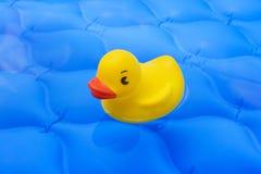 Gele plastic eend in de pool Stock Foto's