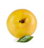 Gele rijpe sappige appel met een blad Stock Foto's