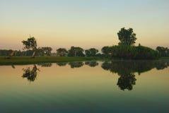 Gele rivier billabong Stock Foto's
