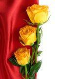 Gele rozen op het rode satijn Royalty-vrije Stock Foto's