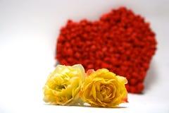 Gele rozen tegen rood hart op achtergrond Royalty-vrije Stock Afbeeldingen